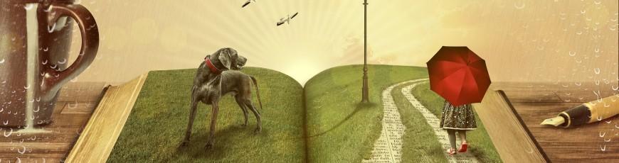 Creatividad a través de los cuentos
